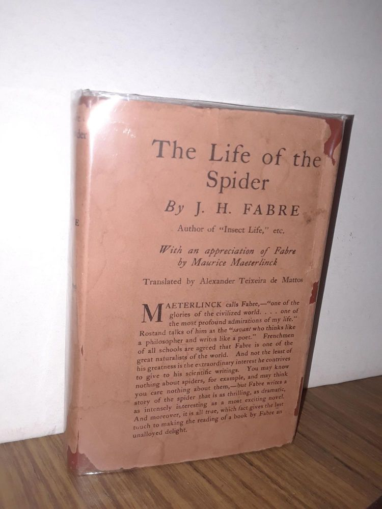 The Life of the Spider. J. H. Fabre.