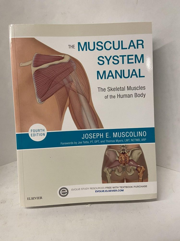The Muscular System Manual: The Skeletal Muscles of the Human Body (4th edition). Joseph E. Muscolino.