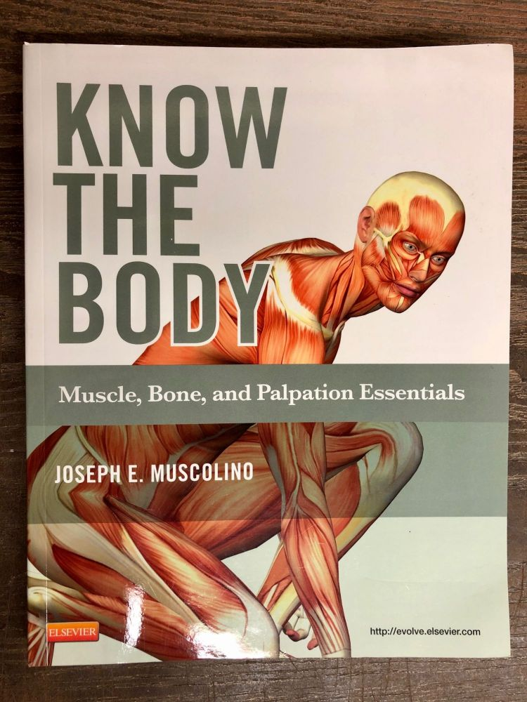 Know the Body: Muscle, Bone, and Palpation Essentials. Joseph E. Muscolino.