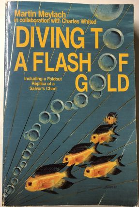 Diving to a Flash of Gold. Martin Meylach